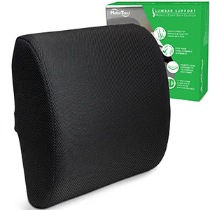 Motion-Trend-Lumbar-Support